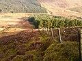Bowland Forest High BB7, UK - panoramio (25).jpg
