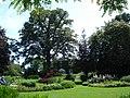 Bressingham Steam and Gardens 03.jpg
