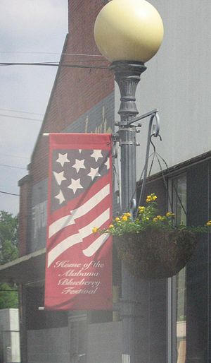 "Brewton, Alabama - Streetlight banner proclaiming Brewton as ""Home of the Alabama Blueberry Festival"""