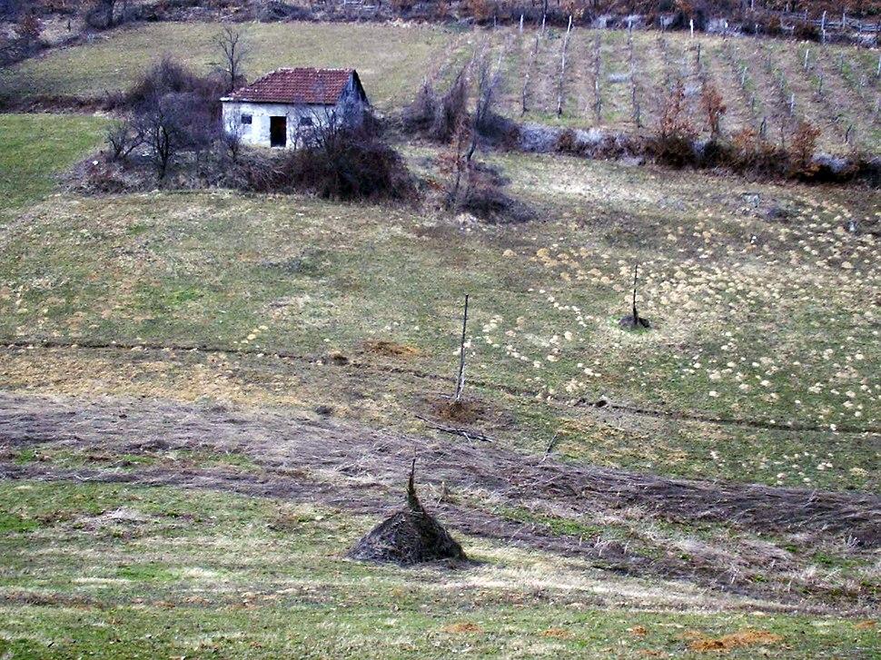 Brezovice - opština Valjevo - zapadna Srbija - panorama 5