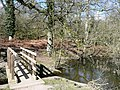 Bridge at Cannop Pond - geograph.org.uk - 743639.jpg