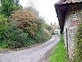 Bridleway, Piddletrenthide - geograph.org.uk - 1040949.jpg