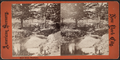Bronx River, Woodlawn, from Robert N. Dennis collection of stereoscopic views.png