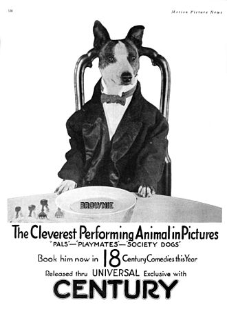 Fred Fishback - Advertisement for short films starring Brownie the dog, including Playmates and Society Dogs (1921)