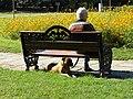 Bucuresti, Romania, Parcul Herastrau (Imagine din parc, 11 - Relaxare); B-II-a-A-18802.JPG