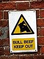 Bull Beef - geograph.org.uk - 635249.jpg
