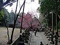 Byosho approach, Kunōzan Tōshō-gū 02.jpg