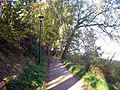 CHOSZCZNO - panoramio (73).jpg