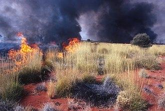 Kultarr - Wild fires (CSIRO)