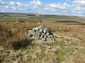 Cairn on Landshot Hill - geograph.org.uk - 1220334.jpg