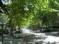 Calle Costa Brava.JPG
