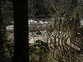 Camp Waskowitz - campfire pit.jpg