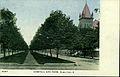 Campbell Ave Park (16255414786).jpg