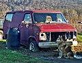 Canine Guarding a Van (69013162).jpg