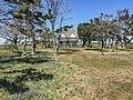 Cape Lookout National Seashore (488bb8c8-eedc-4f9f-bada-324bf3fc0ddc).jpg