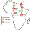 Carte-afrique.png