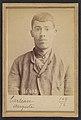 Carteau. Auguste. 23 ans, né à St-Florent (Cher). Verrier. Anarchiste. 1-5-92. MET DP290254.jpg