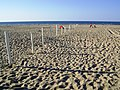 Castlerock Beach - panoramio (8).jpg