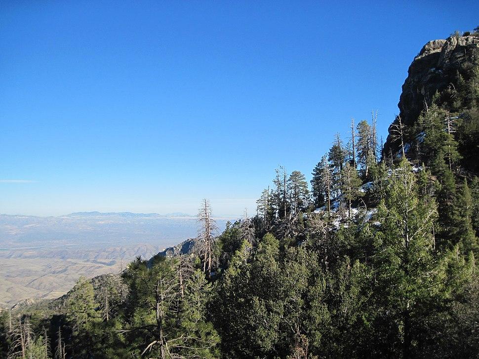 Catalina Mountains elev7000