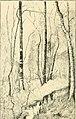 Catalogue illustré des ouvrages de peinture, sculpture et gravure (1893) (14769421782).jpg