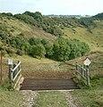 Cattle Grid - panoramio.jpg