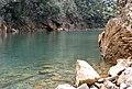 Cayo Guan 2008 - panoramio.jpg
