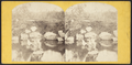 Central Park, fountain near 5th Avenue entrance, from Robert N. Dennis collection of stereoscopic views 2.png