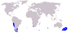 Description de l'image Cetacea_range_map_Dusky_Dolphin.PNG.