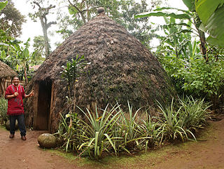 A traditional Chagga hut