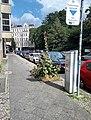 Charlottenburg Krumme Straße Stockrosen-001.jpg