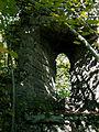 Chateau Montferrand Le Chateau (pan de mur. detail2).jpg