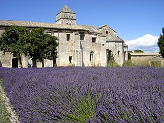 Monastery of Saint-Paul de Mausole Monastery and museum in Provence, France