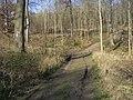 Chiltern Way - geograph.org.uk - 1271329.jpg