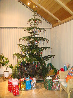 Christmas tree 2010 in Wangen.JPG