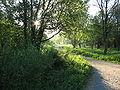 Chudo-polyana in Gatchina.jpg