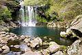 Chunjeyeon Waterfall Jeju Island 2- 천제연폭포.jpg