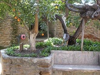 Forestiere Underground Gardens - Citrus trees at the Forestiere Underground Gardens