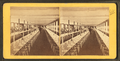 Clam House Dining Room, Rocky Point, R.I, from Robert N. Dennis collection of stereoscopic views 5.png