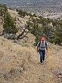 Cline Buttes hiking trail, 2016.jpg