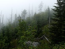 Great Smoky Mountains - Wikipedia