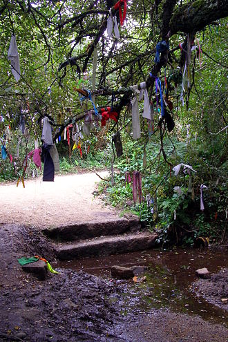 Clootie well - Cloths tied to a tree near Madron Well in Cornwall - though the holy well is actually about 100m back into the woodland from the path