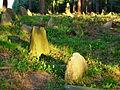 Cmentarz mahometański Studzianka 07 JoannaPyka.JPG