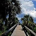 Cocoa Beach, Florida, USA (31893122318).jpg
