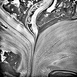 Columbia Glacier, Valley Glacier Convergence, September 7, 1990 (GLACIERS 1537).jpg