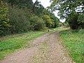Common lane - geograph.org.uk - 1015591.jpg