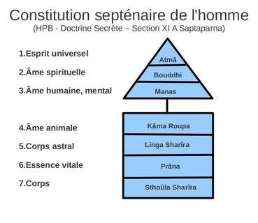 L'illusion de l'ego - Page 17 369px-Constitution_septenairen_de_l'homme