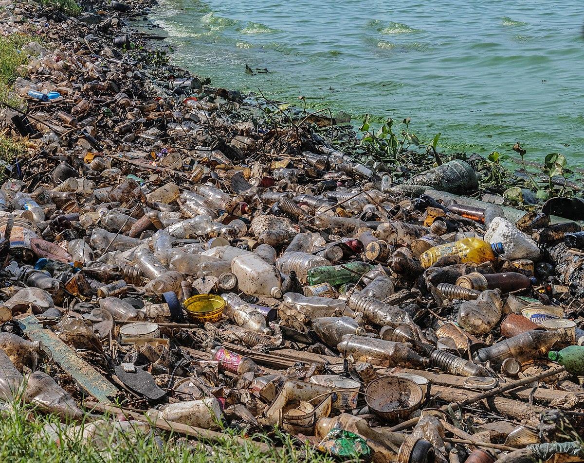 contaminaci n del lago de maracaibo wikipedia la