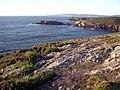 Costa de Dexo - panoramio (1).jpg