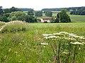 Cottages near Wauldby Manor Farm - geograph.org.uk - 1368528.jpg