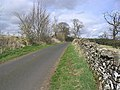 Country Road - geograph.org.uk - 396377.jpg